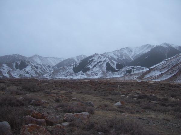 snowstreakedhills